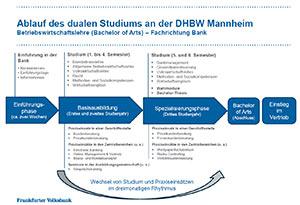 Der Ablaufplan zum Studium an der DHBW Mannheim zu Ihrer Ansicht